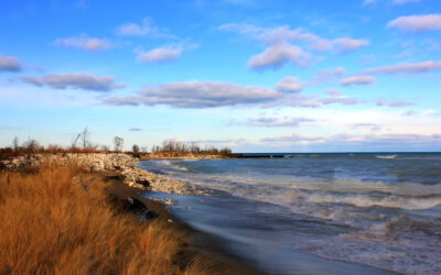 RV Camping Guide to Illinois Beach State Park