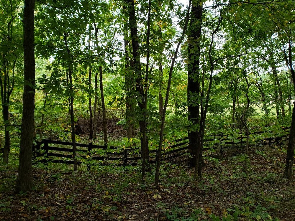 Lincoln Trail State Park Fencing